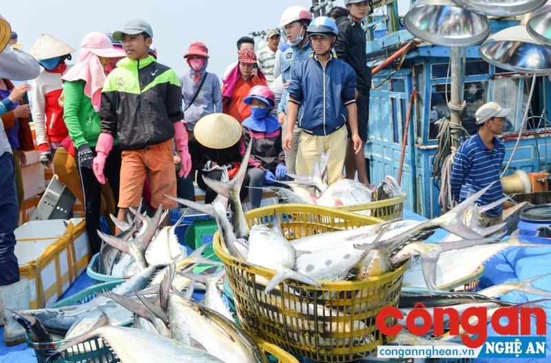 Biển miền Trung đã sạch trở lại sau sự cố Formosa