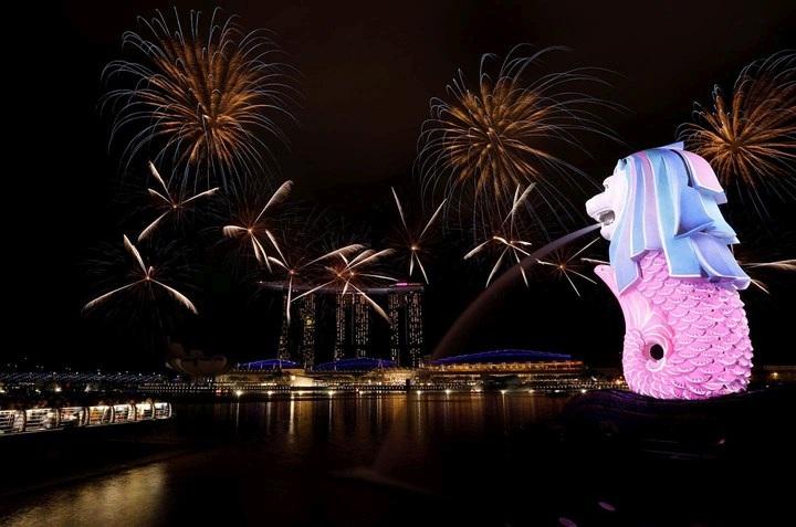 Ngân sách thặng dư hơn 7 tỷ USD, Singapore lì xì toàn dân 1